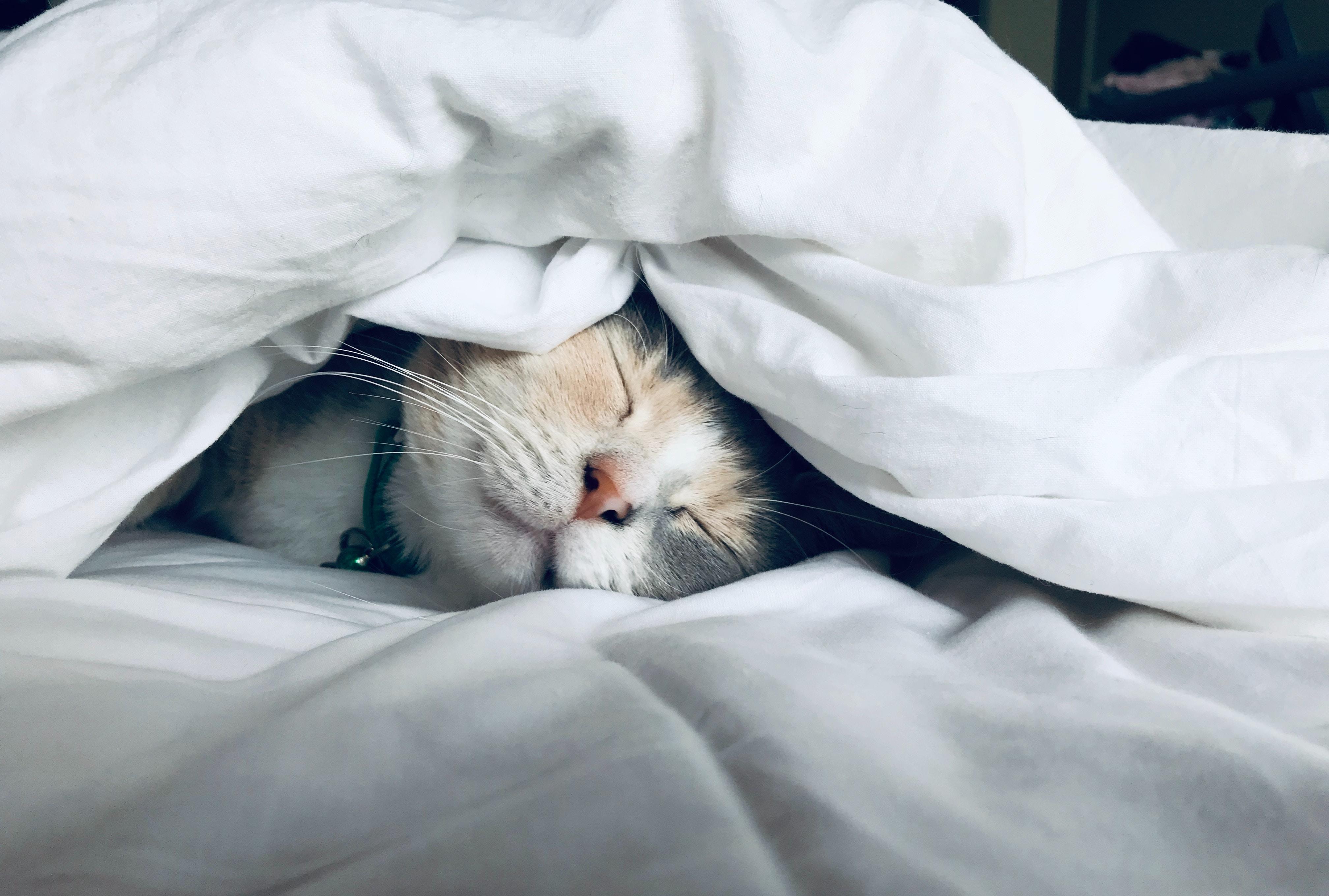 consigli per dormire bene